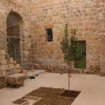 خانههای قدیمی فلسطین در اختیار هنرمندان قرار گرفت