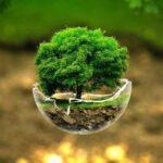 همکاری ایران با صندوق اقلیم سبز سازمان ملل